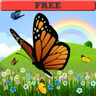 Coloring Book: Butterfly! FREE