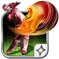 T20 Cricket: T20 2016