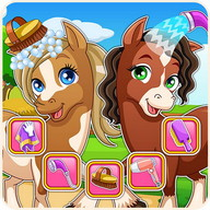 Horse makeover hair salon