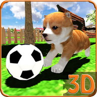 My Cute Pet Dog Puppy Jack Sim