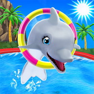 My Dolphin Show - Be the star of the most highly anticipated show at the water park