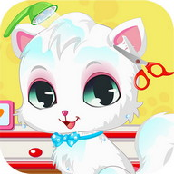 Pet Cat Spa And Salon Games HD