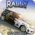 RALLY GYMKHANA