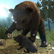 Real Bear Simulator