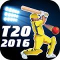 T20 2015