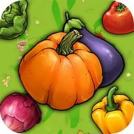 Vegetable Crush