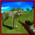 Wild Wolf Hunting 2015
