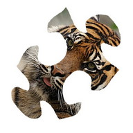 Animals Jigsaw Puzzle