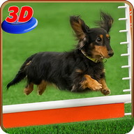 Dog Stunt Show Simulator 3D