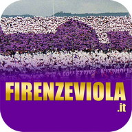 Firenze Viola - Fiorentina