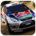 Rally Cars Game