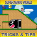 Super Mario World Tricks