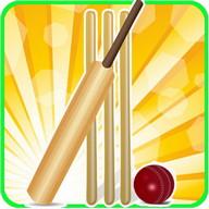 T20 Cricket Blast 2014