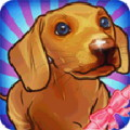 Virtual Dog 3D - Do you want to adopt a virtual dog?