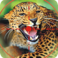 wild Tier Jagd Spiel