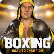 Boxing - Road To Champion