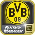 BVB Fantasy Manager '14
