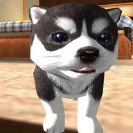 Dog Puppy Simulator 3D