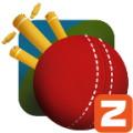 Matchup Cricket