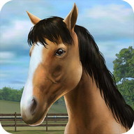 My Horse - Take care of your horse and compete in prestigious events