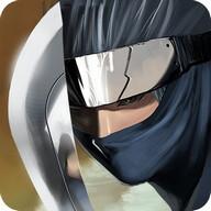 Ninja Revenge