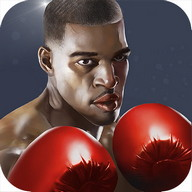 Punch Boxing 3D - Become the king of boxing