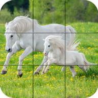 Puzzle - schöne Pferde