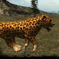 Real Cheetah Simulator