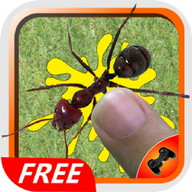 Ant Smasher Best Free Game