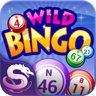Wild Bingo - Bingo+Slot GRATIS