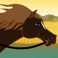 Horse Racing - Animal Doctor