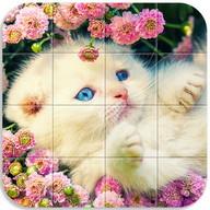 Quebra-cabeça de gatos