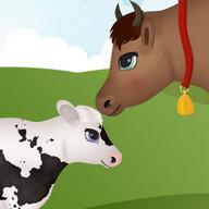 permainan hamil sapi yang