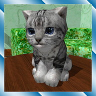 Cute Pocket Cat 3D - Part 2