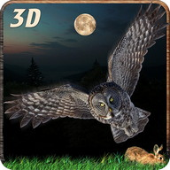 Eagle Owl Bird Attack sim