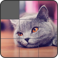 Jigsaw Puzzle: Cute Animals