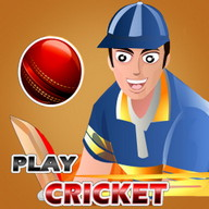 Play Cricket