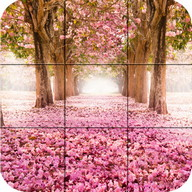 Puzzle - Beauty Of Nature