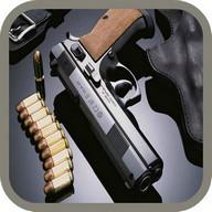 Short-barreled gun shots