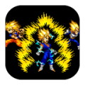 Super Goku Fighter