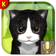 Talking Kittens virtual cat that speaks, take care