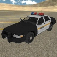 Fast Police Car Driving 3D