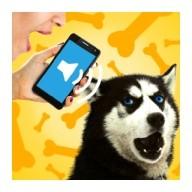Dog Voice Translator