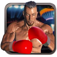 Real 3D Boxing Punch