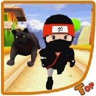 Subway Ninja Run Fast