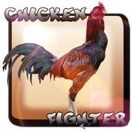 Chicken Fighter Indonésia