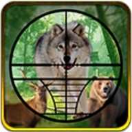 Real Jungle Animals Hunting - Best Shooting Game