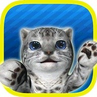 Cat Simulator - and friends ?