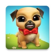 My Virtual Pet Dog ? Louie the Pug