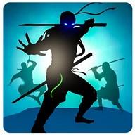 Shadow Fighter Heroes: Kung Fu Mega Combat